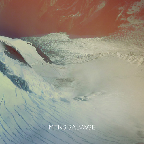 MNTS - Salvage