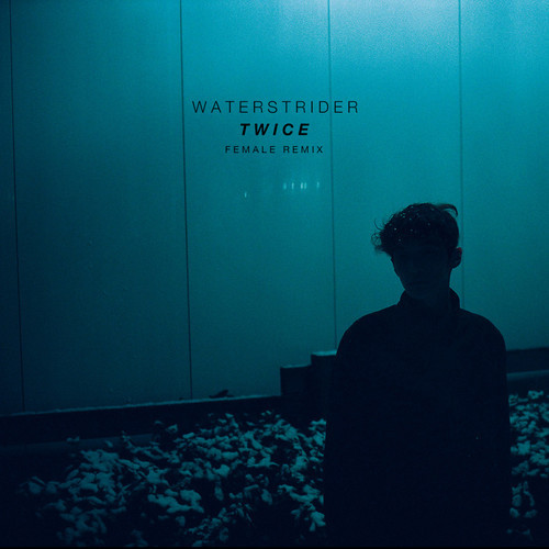 Waterstider - Twice (Little Dragon Cover) (Female Remix)